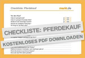 Checkliste Pferdekauf