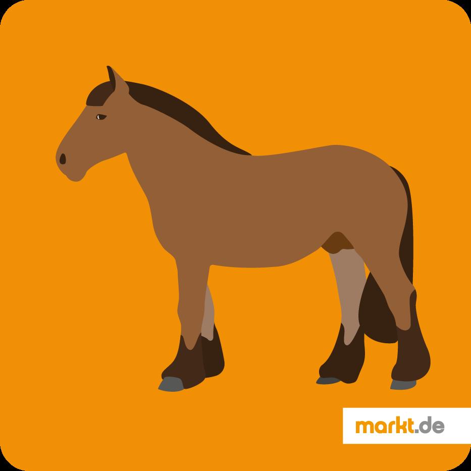 Belgisches Kaltblut (Brabanter)