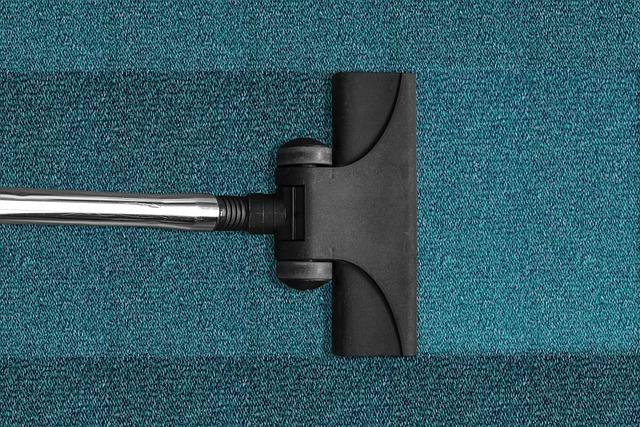 Bild Staubsauger auf Teppich