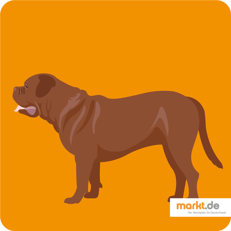 Bordeaux-Dogge