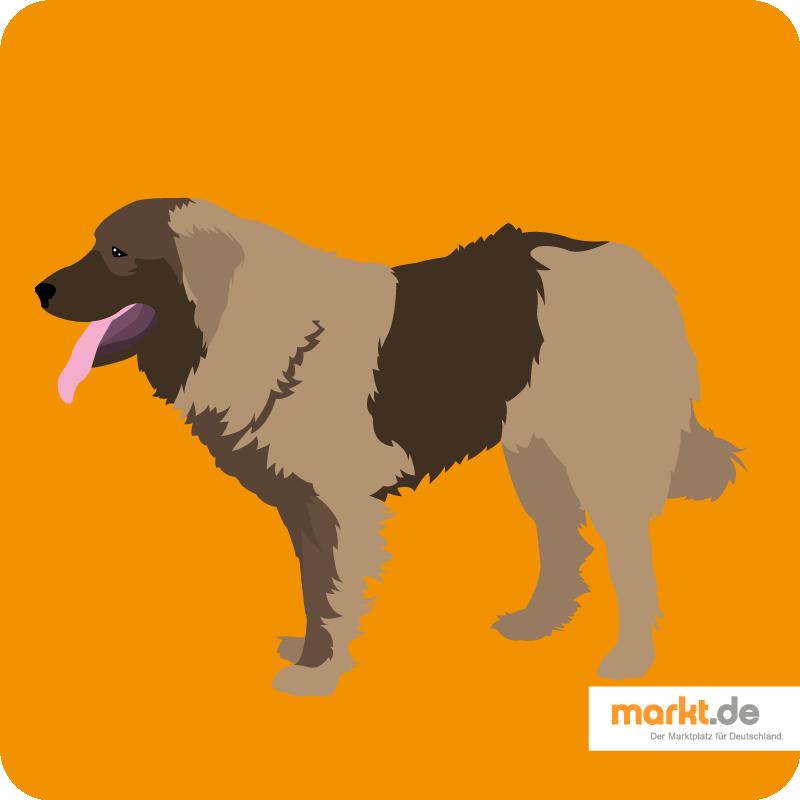Kaukasischer Schäferhund