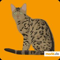 Leopardette
