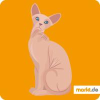 Grafik Sphynx Katze