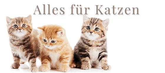 Alles für Katzen