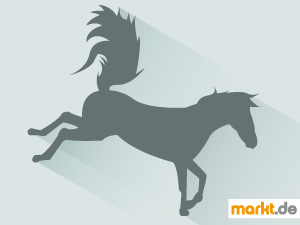 Bild bockiges Pferd