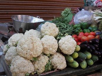 Tipps Für Den Anbau Eines Gemüsebeetes | Markt.de Im Herbst Ein Gemusebeet Anlegen