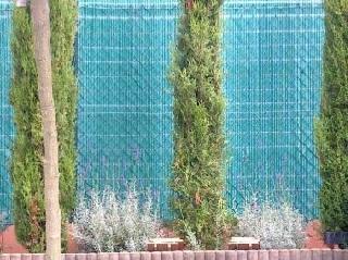 Bild Sichtschutz Kunststoffwand mit Pflanzen