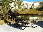 Pferdefuhrwerk - Fuhrwerk
