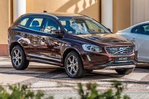 Bild Dunkelbrauner Volvo SUV Mann