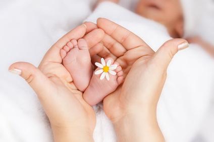 Gesunde Babyfüße mit Gänseblümchen zwischen den Zehen