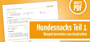 Grafik Download Hundesnackrezepte 1