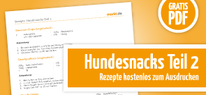Grafik Download Hundesnackrezepte 2