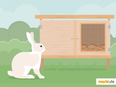 Grafik Kaninchenstall selber bauen