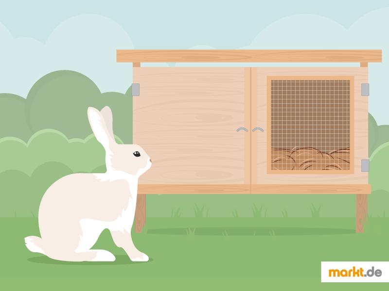 Grafik Kaninchenstall Selber Bauen Einen Selbstgebauten Konnen Sie Genau Auf Die Bedurfnisse Ihres Tieres Anpassen