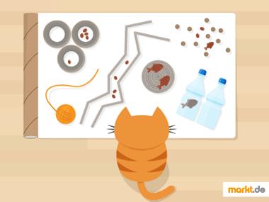 Grafik Katzenspielzeug selber basteln