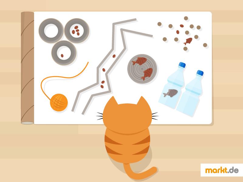 Spielzeug Für Katzen Selber Basteln Marktde