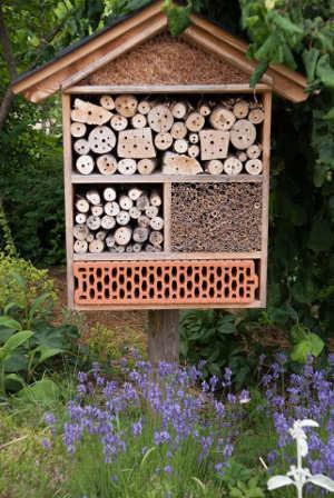 Fächer Insektenhotel
