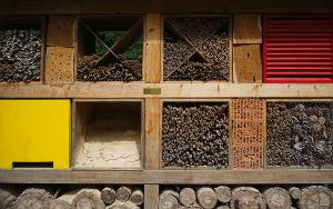 Insektenhotel bauen Material