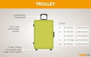 Grafik Trolley Informationen