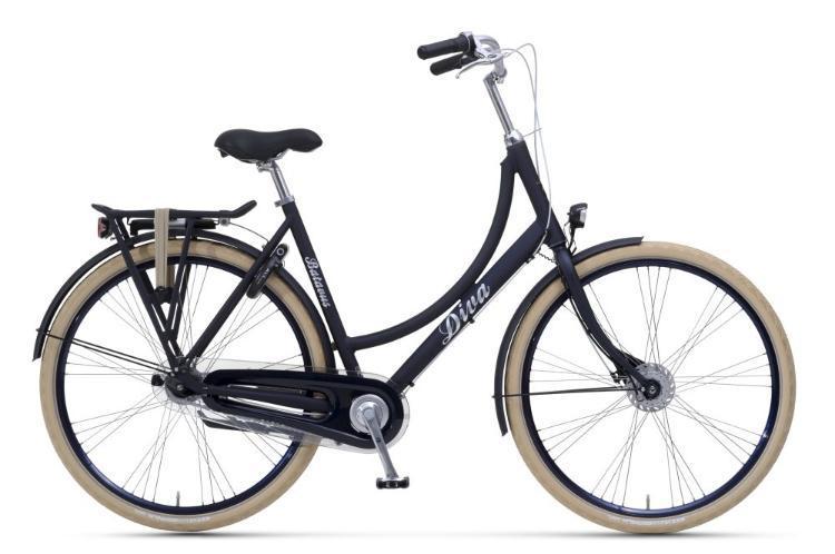 Bild Hollandrad Citybike