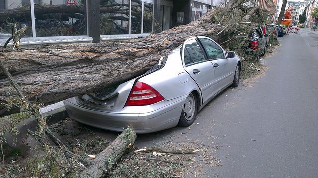 Bild Fahrzeug Schaden