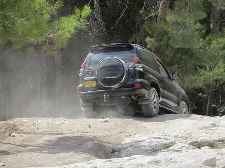 Bild Toyota Jeep