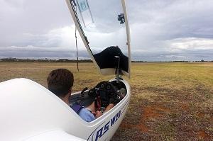 Bild Segelflugzeug