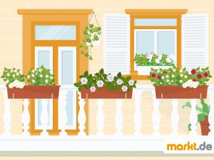 Grafik Balkon mit Blumenkästen