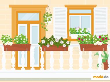 Grafik Balkon bepflanzen