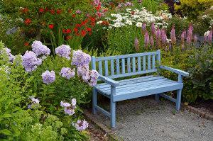 Bild Blumenbeet Gartenarbeit