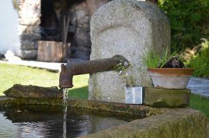 Bild Brunnen aus Stein im Garten