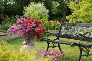Bild Feng Shui Garten Sitzbank Wissen