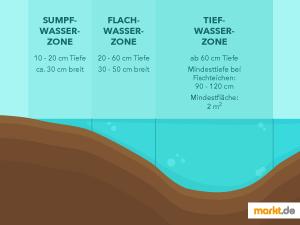 Grafik Tiefenzonen des Fischteichs