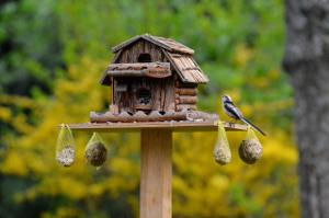 Bild Vogelfutterhaus im Garten