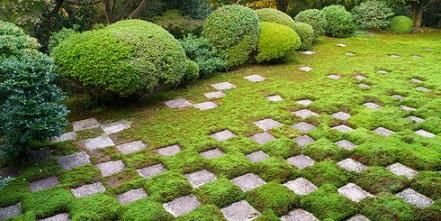 Bild Garten mit Musterbebauung
