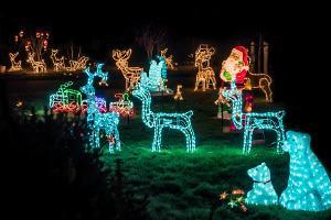 Bild Gartenbeleuchtung Weihnachten