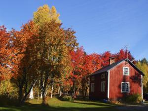 Bild Garten Haus Herbst