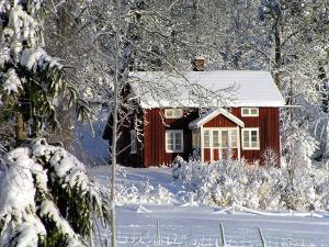 Bild Garten mit Schnee und Haus