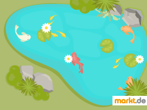 Grafik Gartenteich mit Fischen