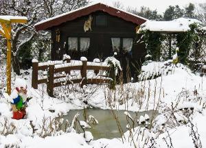 Bild Gartenteich im Winter