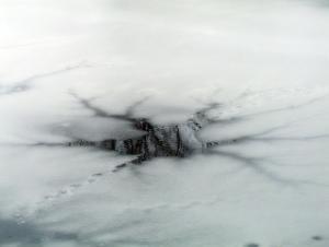 Bild Gartenteich im Winter mit Eis