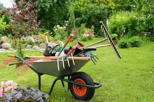 Bild Gartenwerkzeug Gartenarbeit