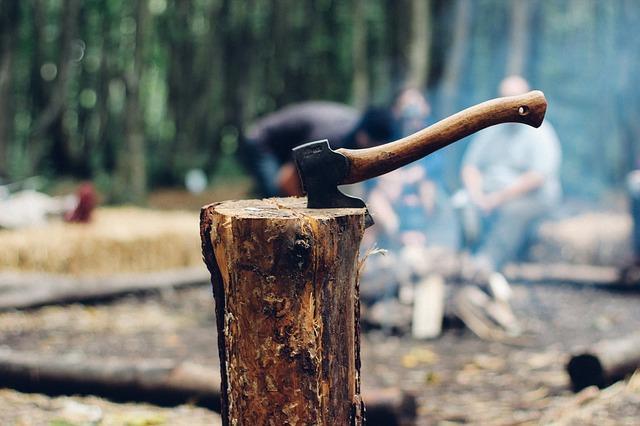Bild Brennholz spalten mit Axt