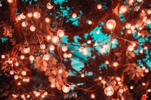romantische Lichterkette im Garten