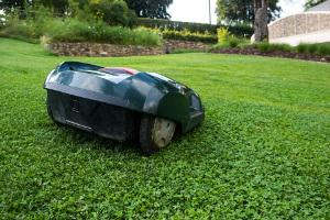 Bild Rasenmähroboter