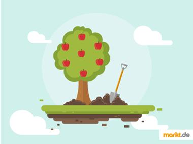 Grafik Obstbaum pflanzen