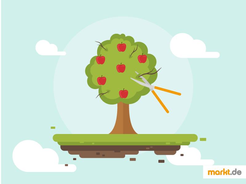 Obstbaume Richtig Schneiden Markt De