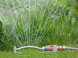 Bild Rasen gießen