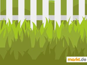 Grafik Rasen im Garten
