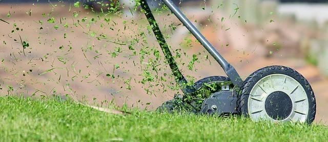 Bild Rasen mähen